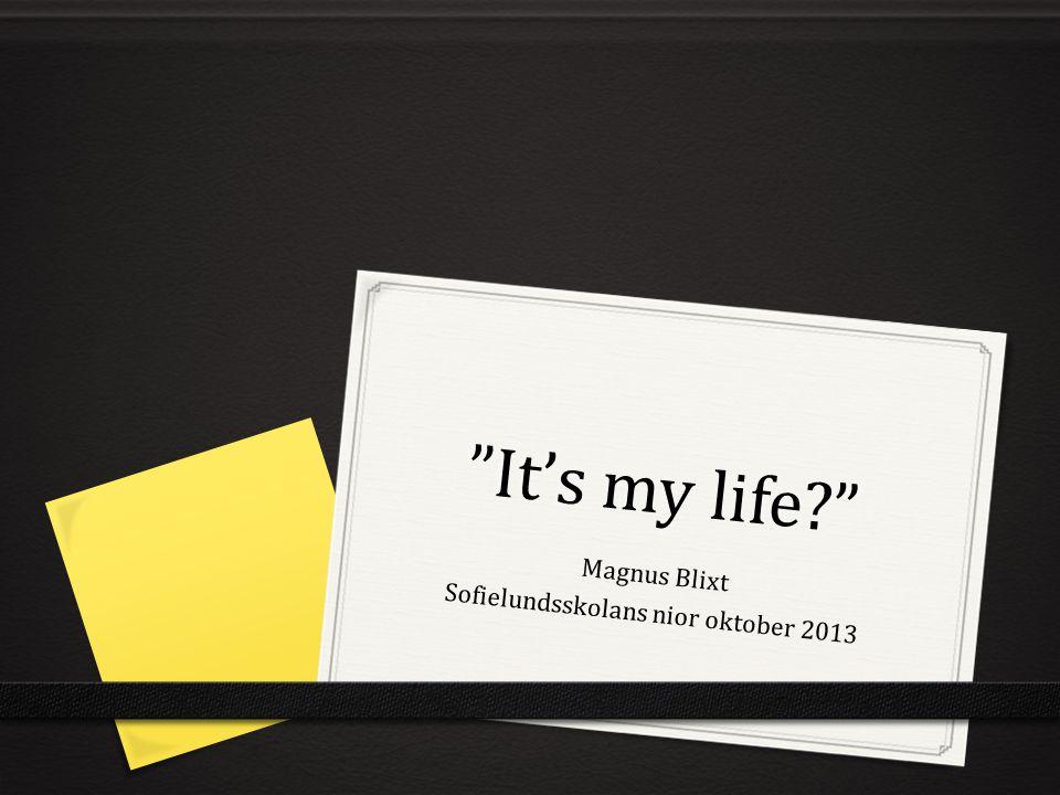 Magnus Blixt Sofielundsskolans nior oktober 2013
