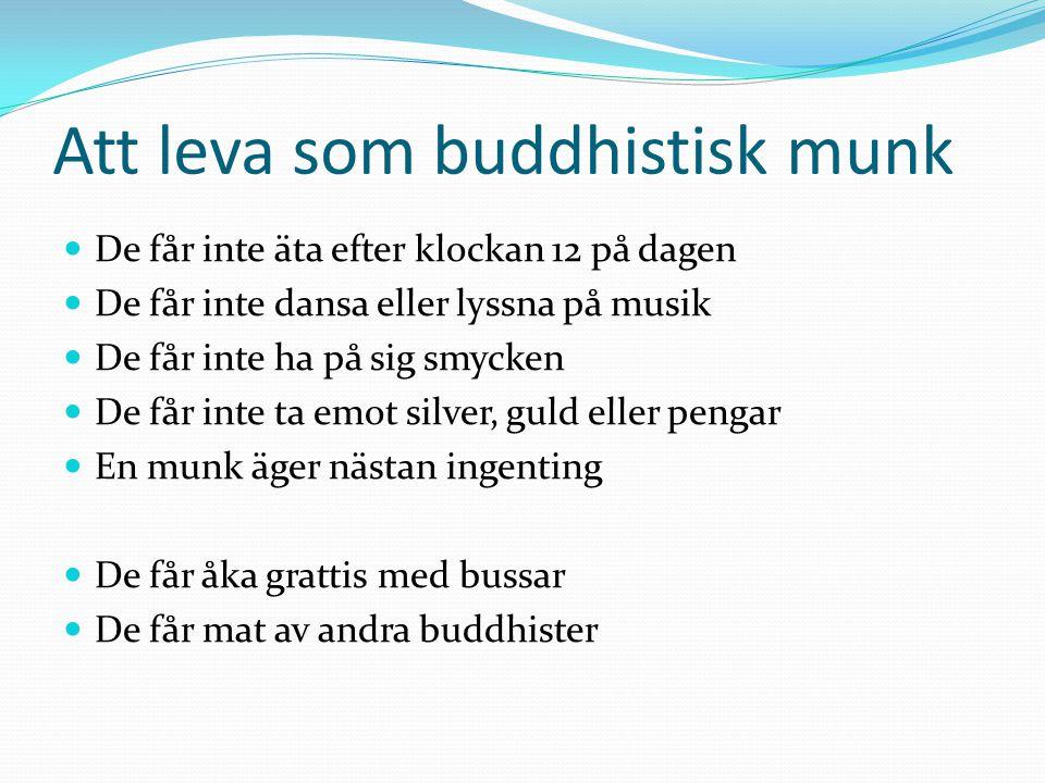 Att leva som buddhistisk munk