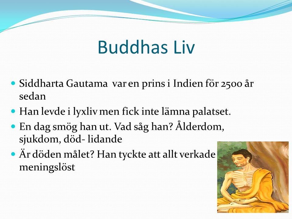 Buddhas Liv Siddharta Gautama var en prins i Indien för 2500 år sedan