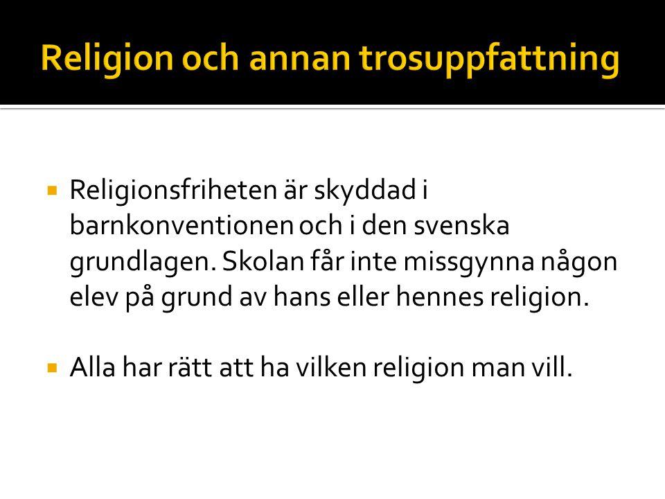 Religion och annan trosuppfattning