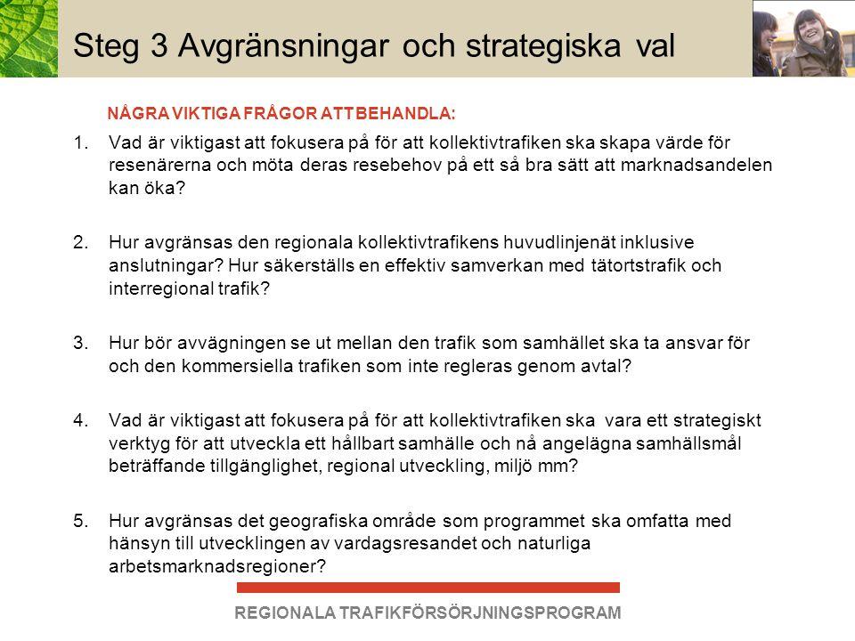 Steg 3 Avgränsningar och strategiska val