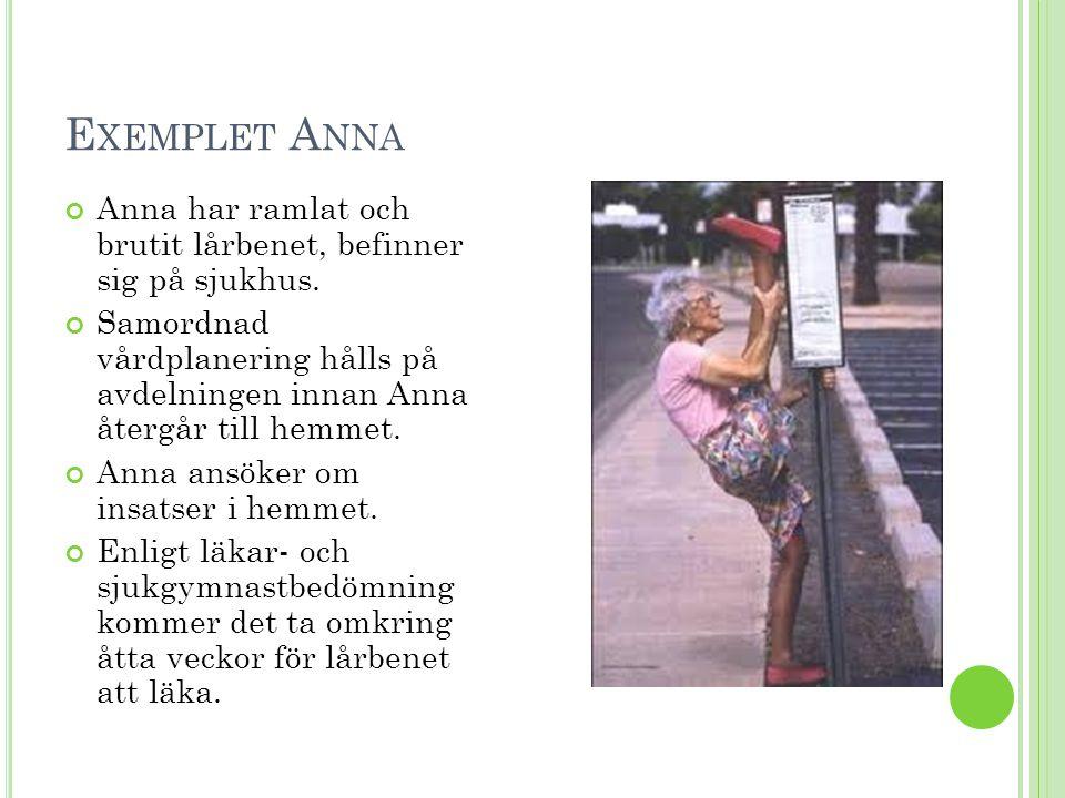 Exemplet Anna Anna har ramlat och brutit lårbenet, befinner sig på sjukhus.