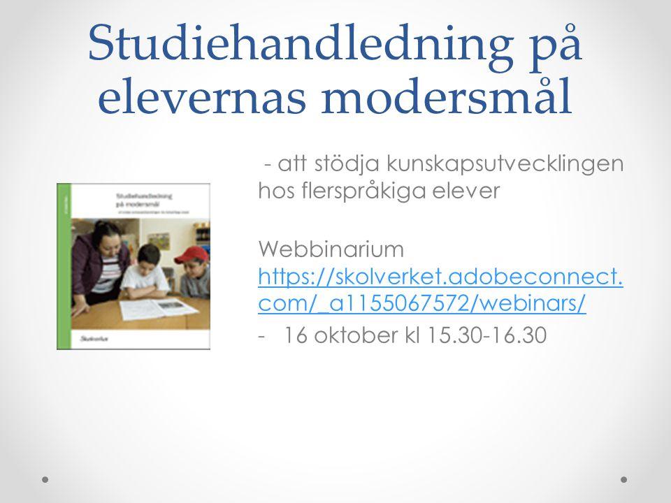 Studiehandledning på elevernas modersmål