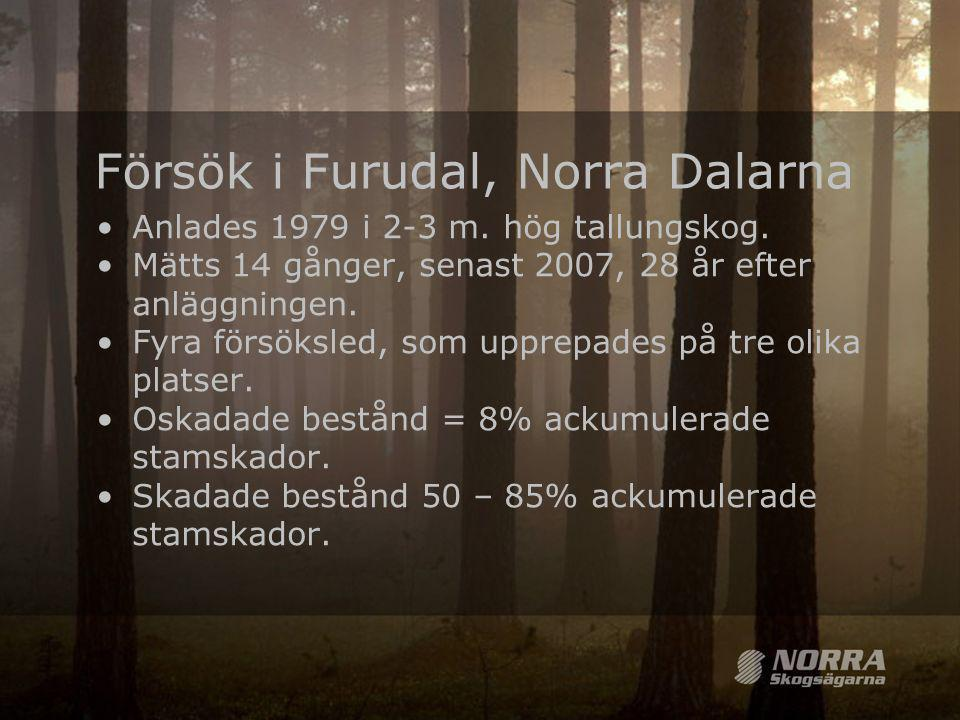 Försök i Furudal, Norra Dalarna