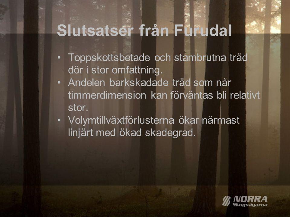 Slutsatser från Furudal
