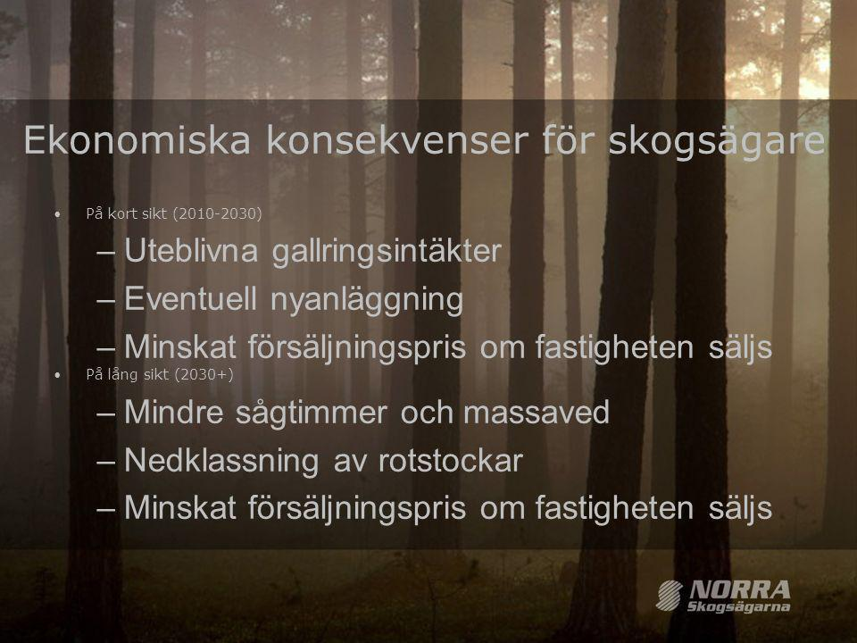 Ekonomiska konsekvenser för skogsägare