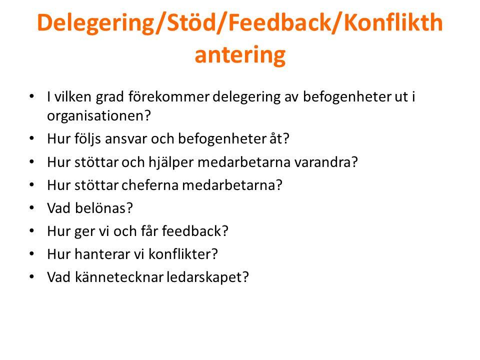 Delegering/Stöd/Feedback/Konflikthantering