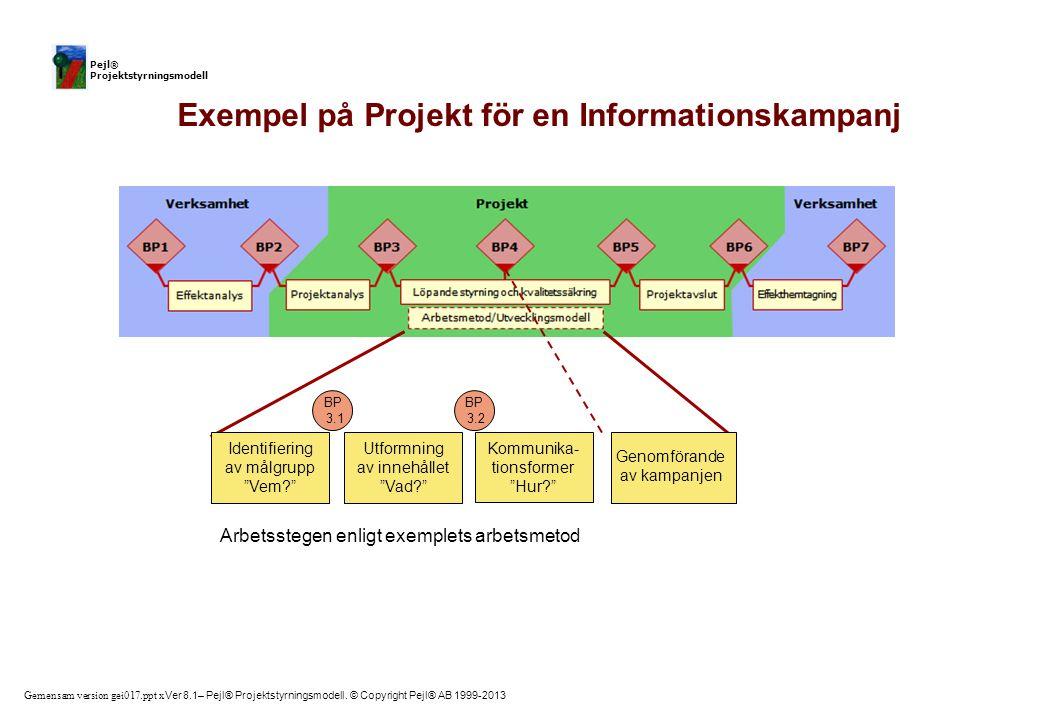 Exempel på Projekt för en Informationskampanj