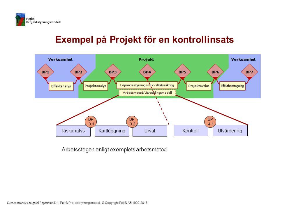 Exempel på Projekt för en kontrollinsats