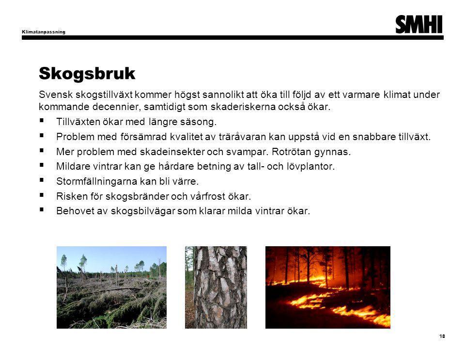 Klimatanpassning Skogsbruk.