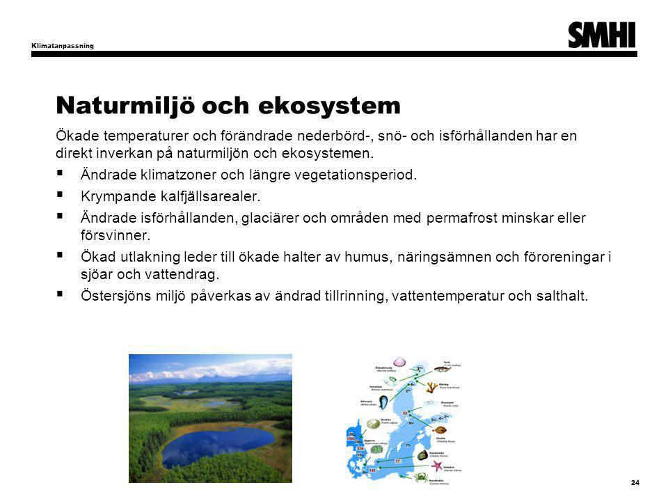 Naturmiljö och ekosystem