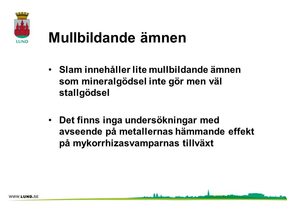 Mullbildande ämnen Slam innehåller lite mullbildande ämnen som mineralgödsel inte gör men väl stallgödsel.