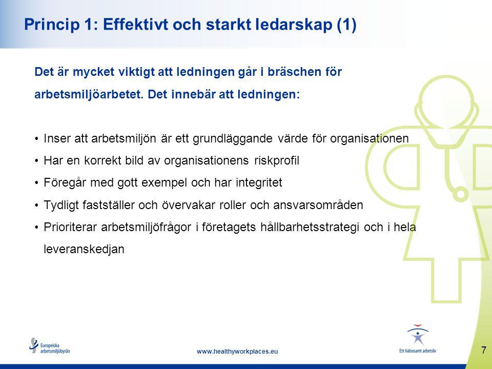 Princip 1: Effektivt och starkt ledarskap (1)