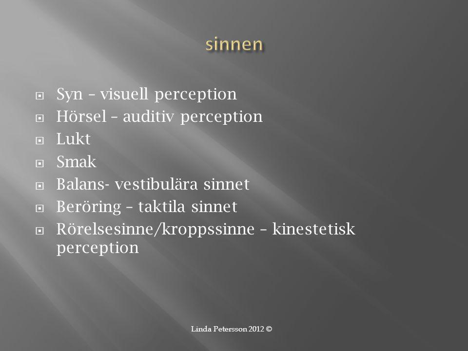 sinnen Syn – visuell perception Hörsel – auditiv perception Lukt Smak