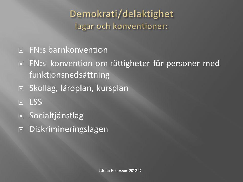Demokrati/delaktighet lagar och konventioner: