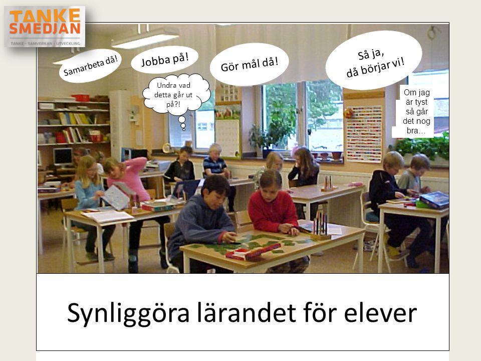 Synliggöra lärandet för elever