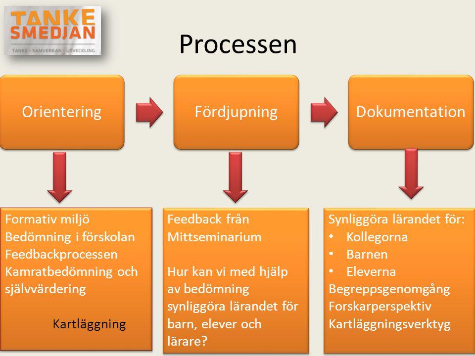 Processen Orientering Fördjupning Dokumentation Formativ miljö