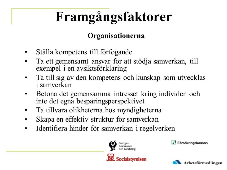 Framgångsfaktorer Organisationerna Ställa kompetens till förfogande