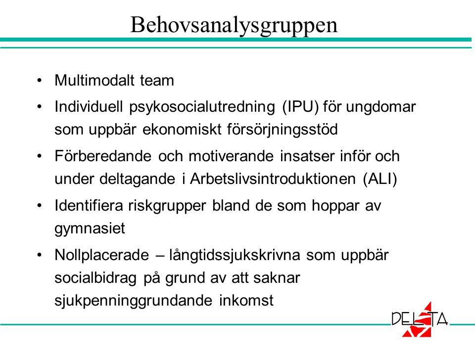 Behovsanalysgruppen Multimodalt team