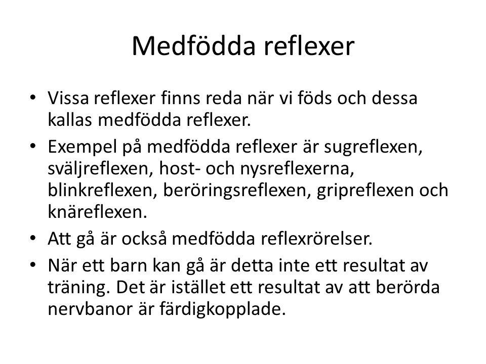 Medfödda reflexer Vissa reflexer finns reda när vi föds och dessa kallas medfödda reflexer.