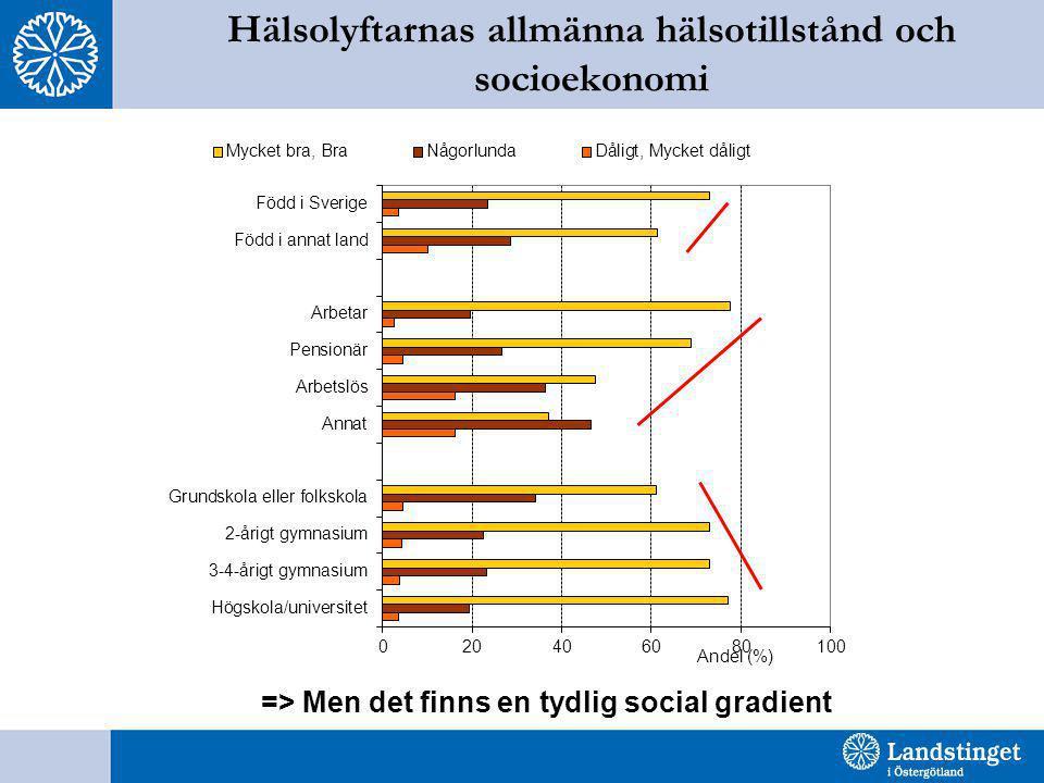 Hälsolyftarnas allmänna hälsotillstånd och socioekonomi