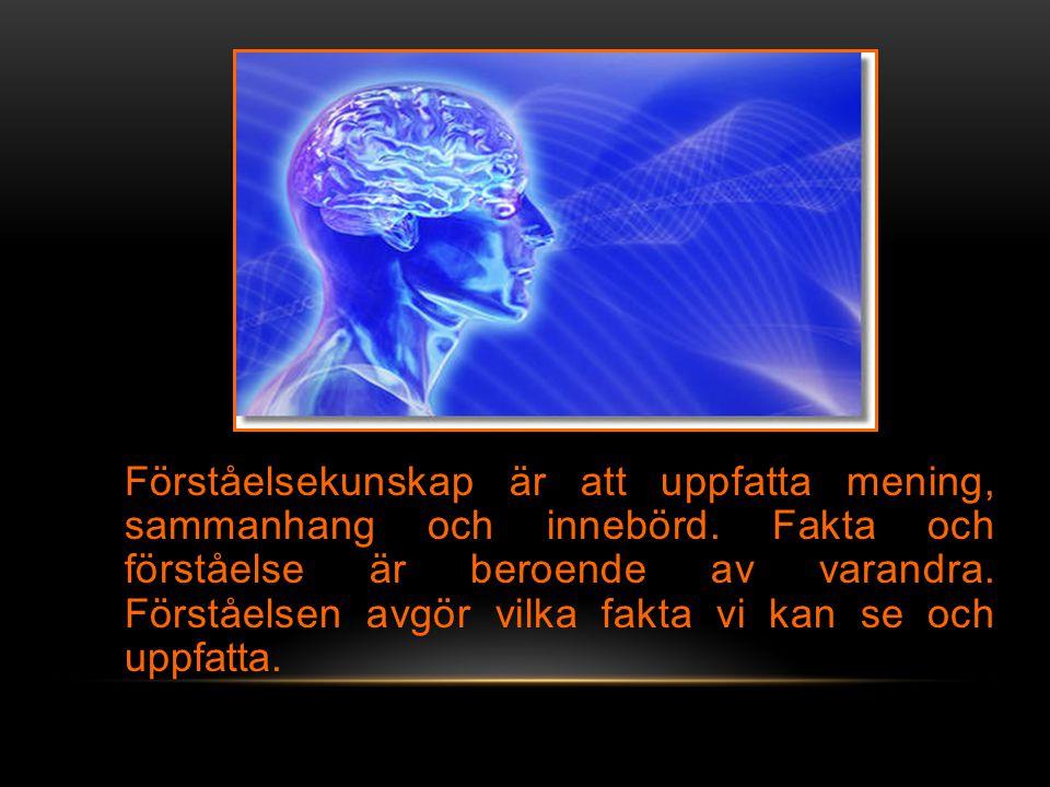 Förståelsekunskap är att uppfatta mening, sammanhang och innebörd