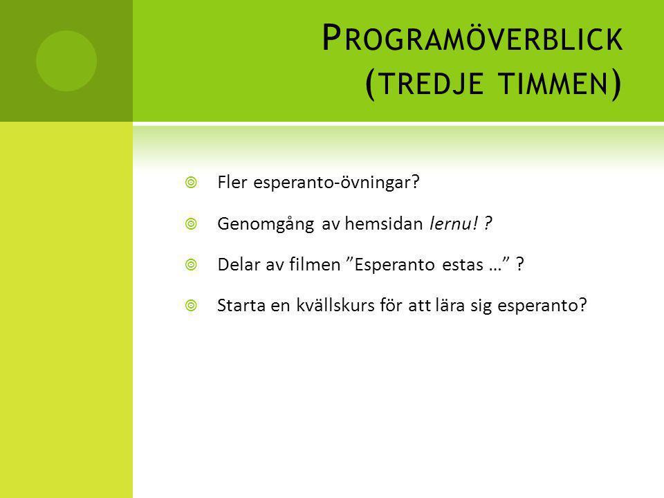 Programöverblick (tredje timmen)