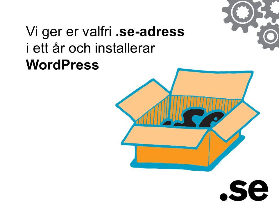 Vi ger er valfri .se-adress i ett år och installerar WordPress