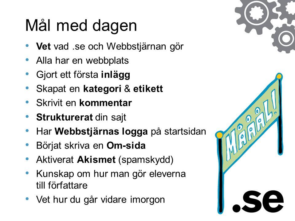 Mål med dagen Vet vad .se och Webbstjärnan gör Alla har en webbplats