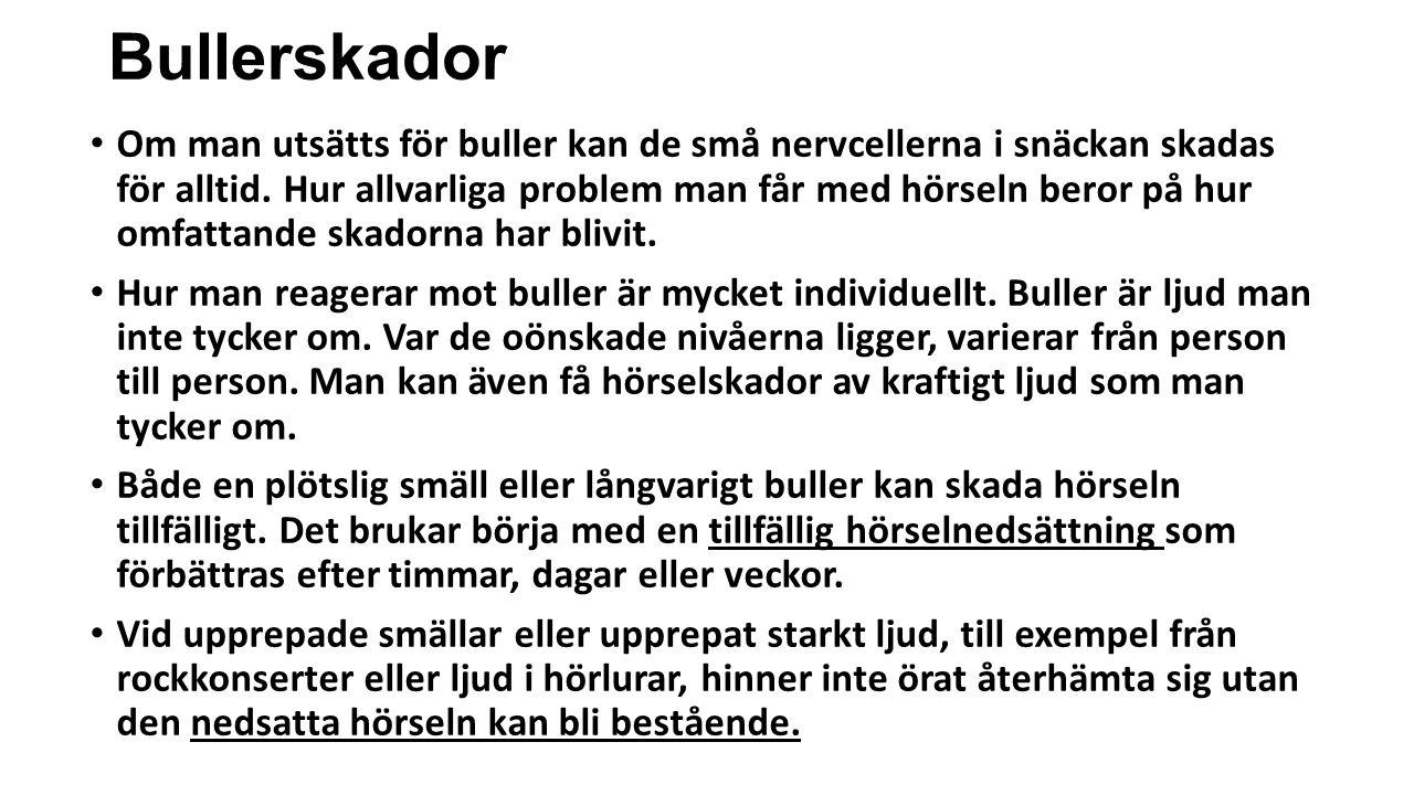 Bullerskador