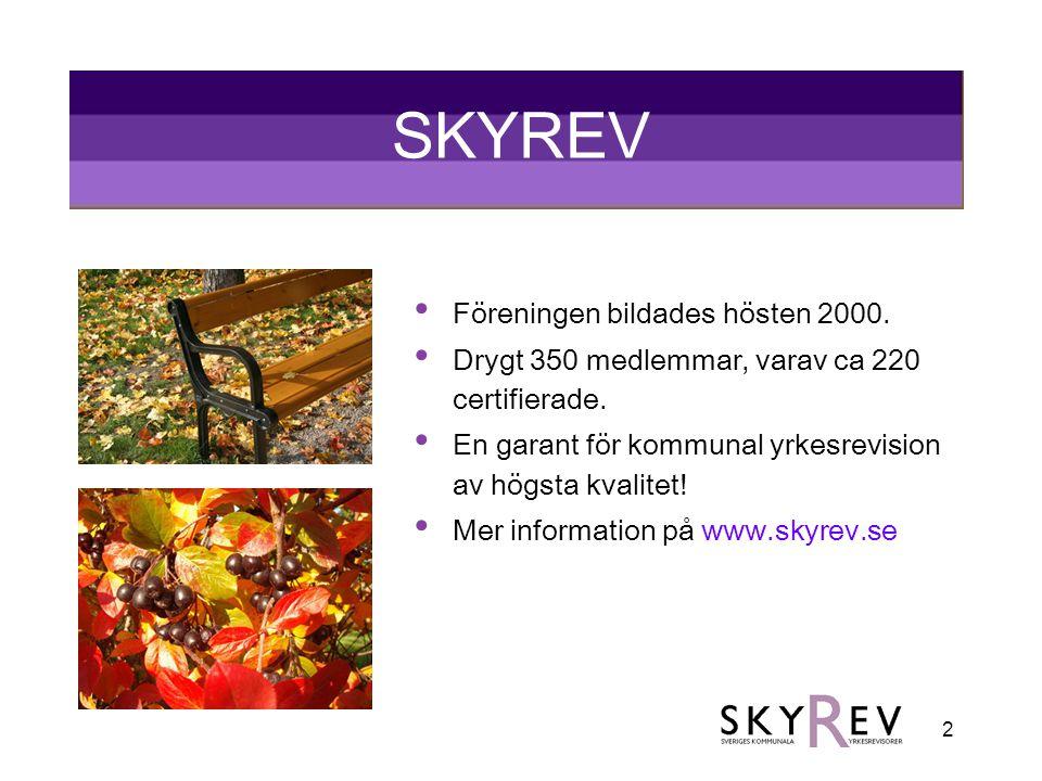 SKYREV Föreningen bildades hösten 2000.