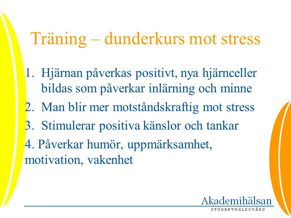 Träning – dunderkurs mot stress