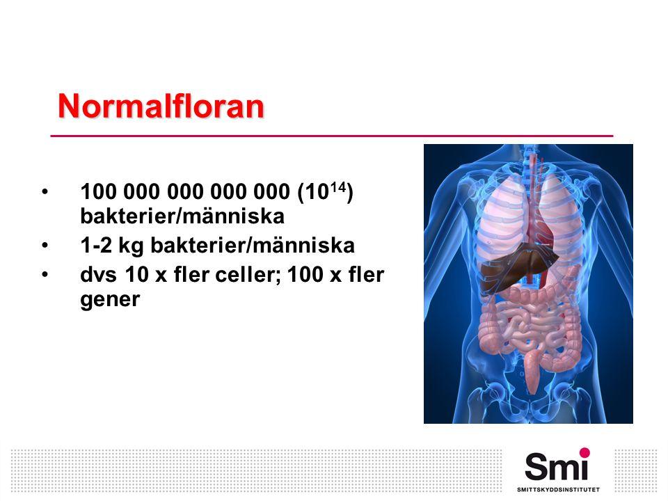 Normalfloran 100 000 000 000 000 (1014) bakterier/människa