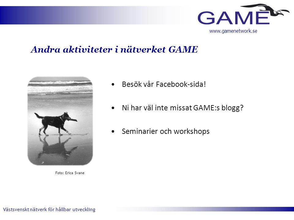 Andra aktiviteter i nätverket GAME