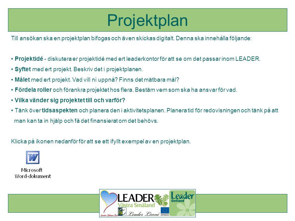Projektplan Till ansökan ska en projektplan bifogas och även skickas digitalt. Denna ska innehålla följande: