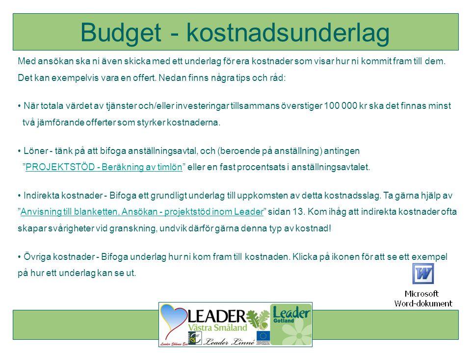 Budget - kostnadsunderlag