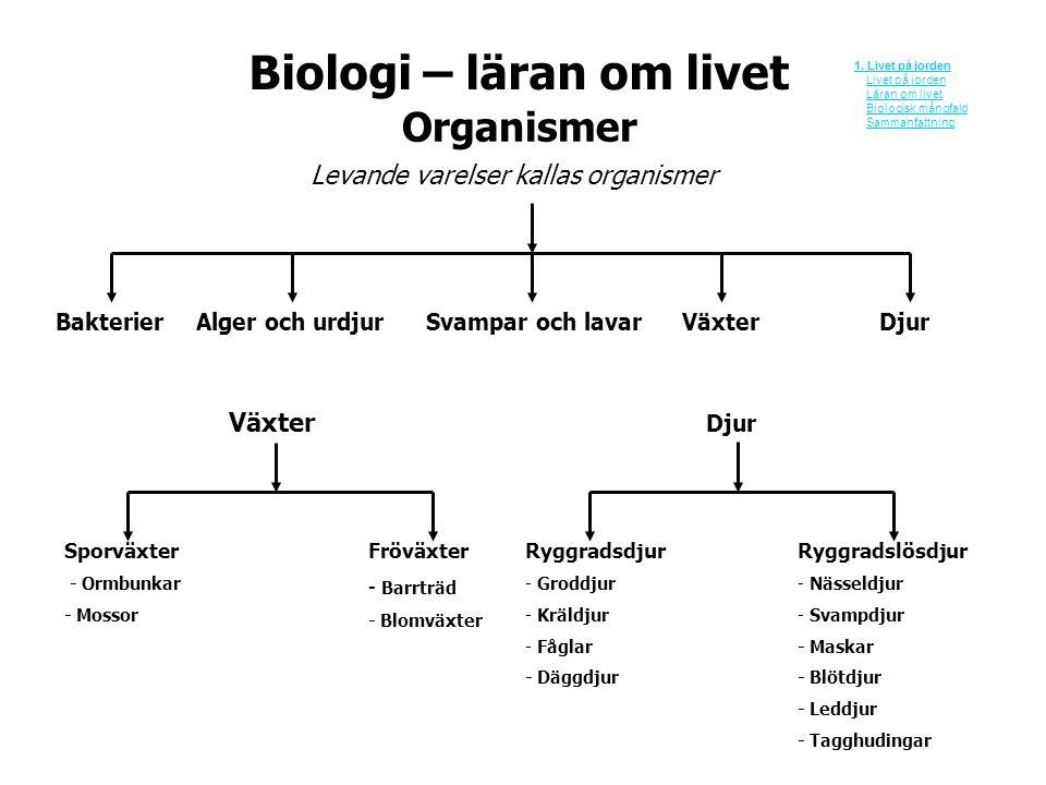Biologi – läran om livet