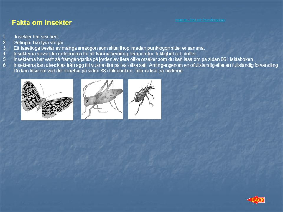 Fakta om insekter Insekter har sex ben. Getingar har fyra vingar.