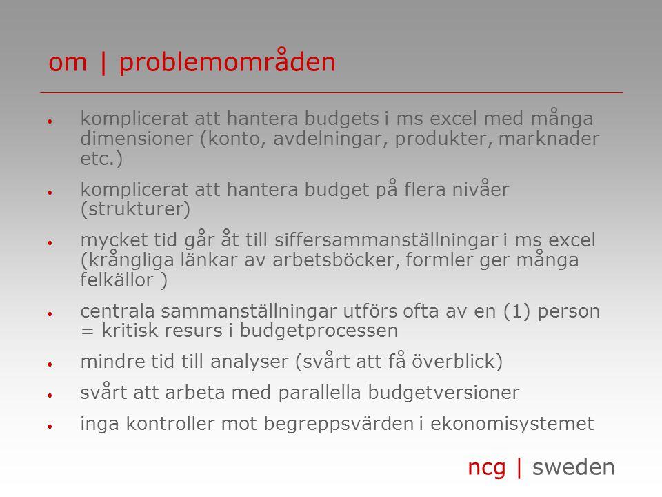 om | problemområden komplicerat att hantera budgets i ms excel med många dimensioner (konto, avdelningar, produkter, marknader etc.)