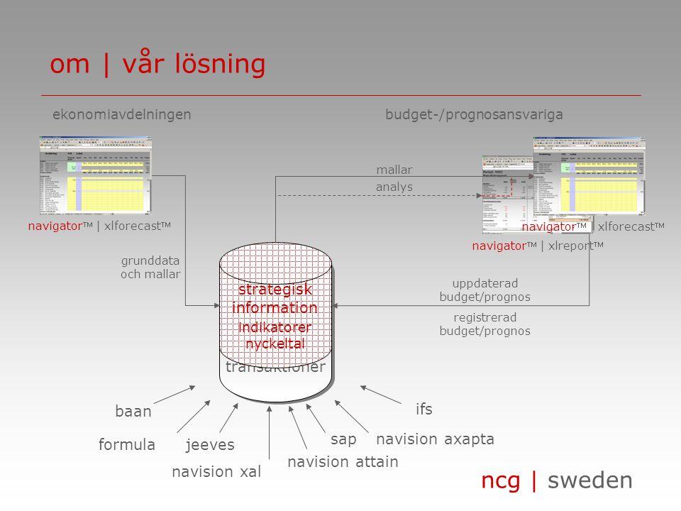 om | vår lösning transaktioner strategisk information formula sap