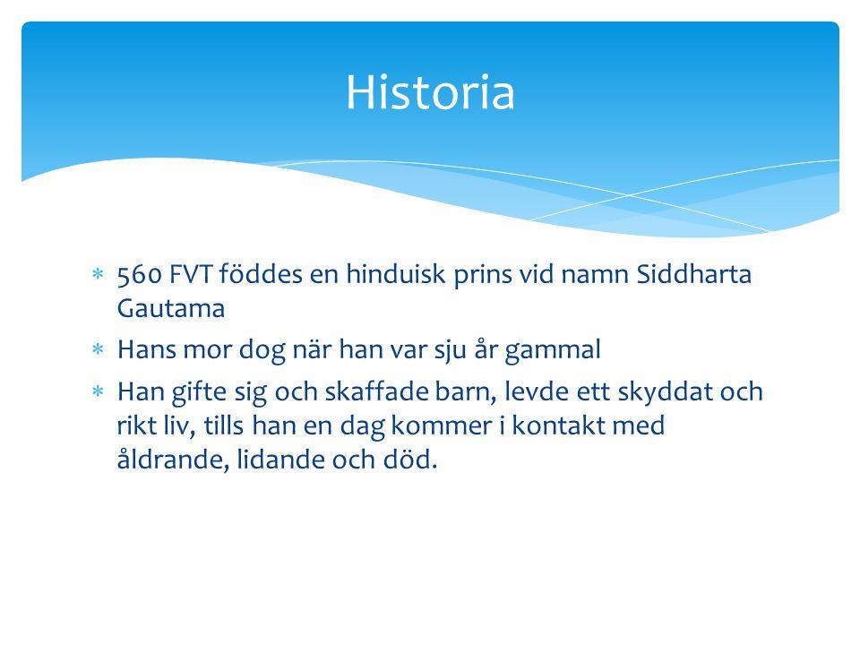 Historia 560 FVT föddes en hinduisk prins vid namn Siddharta Gautama