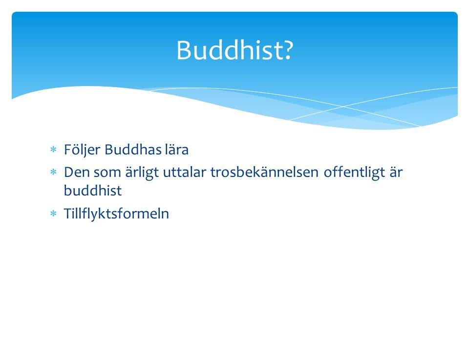 Buddhist Följer Buddhas lära