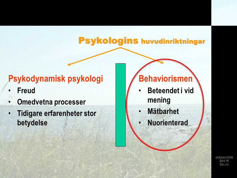 Psykologins huvudinriktningar