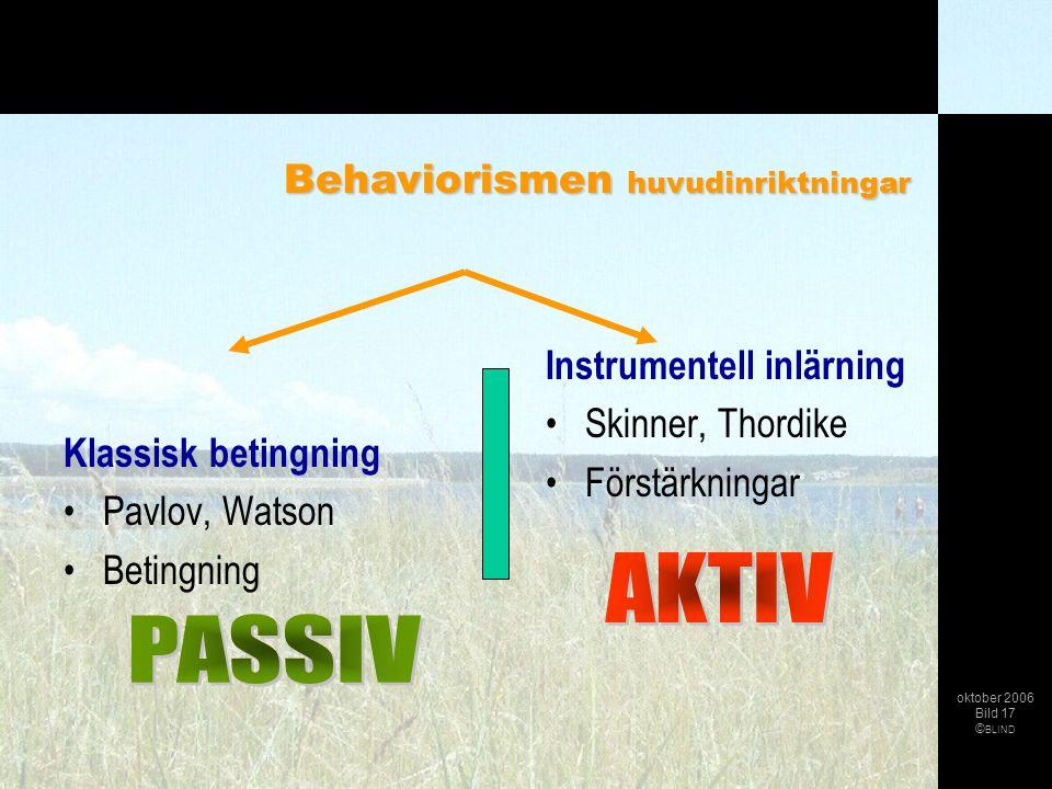 AKTIV PASSIV Behaviorismen huvudinriktningar Instrumentell inlärning