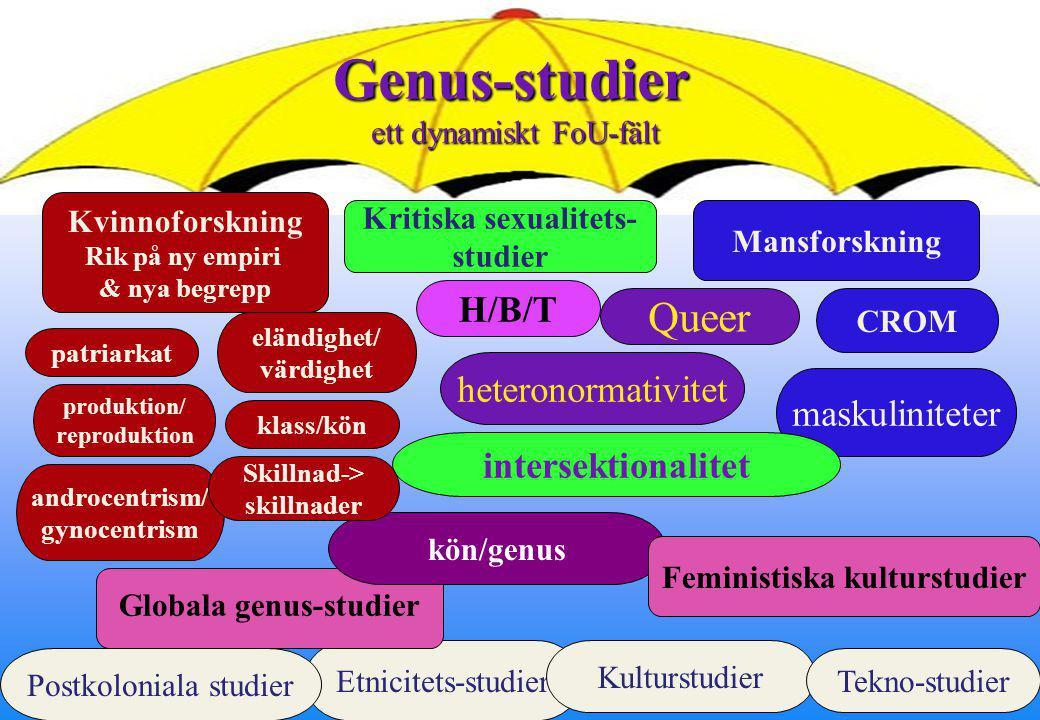 Kritiska sexualitets- Globala genus-studier