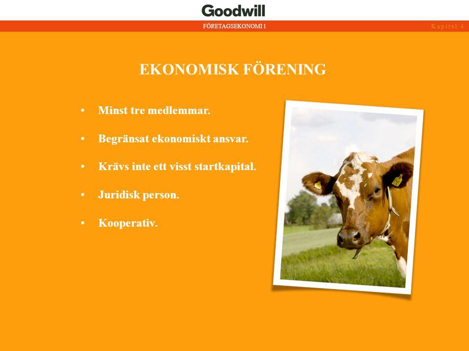 EKONOMISK FÖRENING Minst tre medlemmar. Begränsat ekonomiskt ansvar.