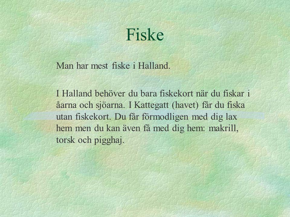 Fiske Man har mest fiske i Halland.