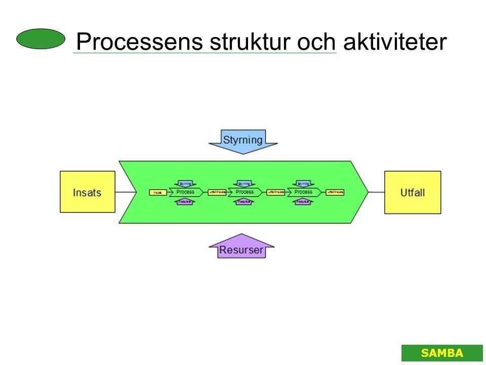 Processens struktur och aktiviteter