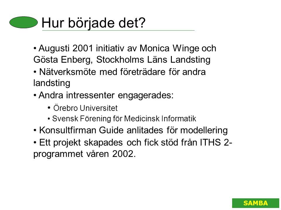 Hur började det Augusti 2001 initiativ av Monica Winge och Gösta Enberg, Stockholms Läns Landsting.