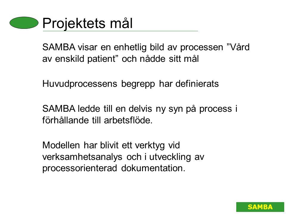 Projektets mål SAMBA visar en enhetlig bild av processen Vård av enskild patient och nådde sitt mål.